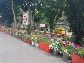 Tube station flowers