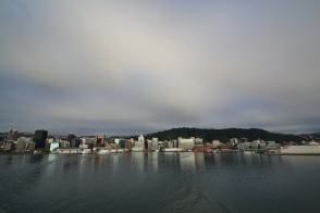 Bye Wellington!