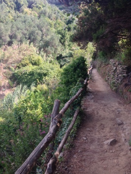 Part of the pathway