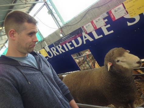 Nick copying sheep