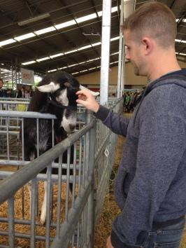 Nick patting a goat