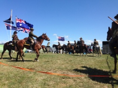 Horses reenacting WWI